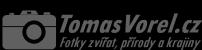 Tomáš Vorel - fotogalerie zvířat, přírody a krajiny